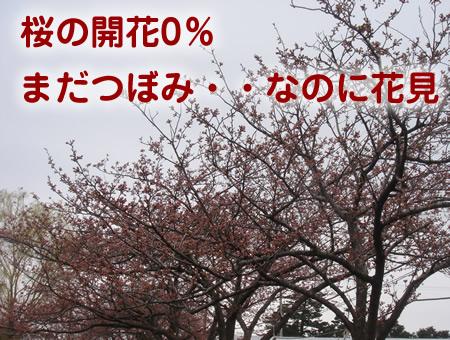 0411-1.jpg