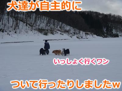20130220国安16.jpg