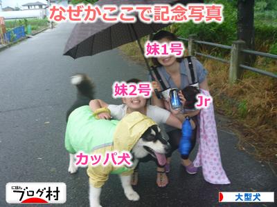 2013カッパ犬15.jpg