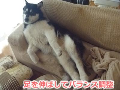 2013ソファーに横になる03.jpg