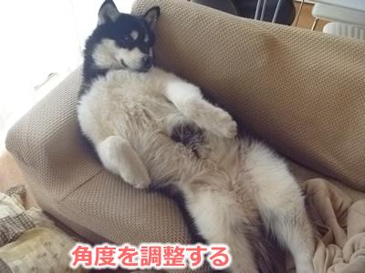 2013ソファーに横になる05.jpg