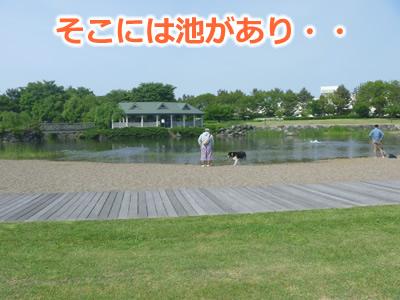 2013公園03.jpg