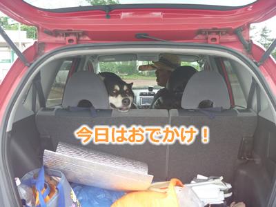 2013国安7月01.jpg