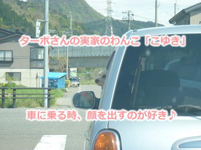 2013GW46.jpg
