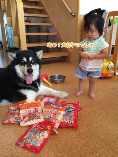 20150630犬おやつ.jpg