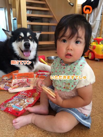 20150630犬おやつ4.jpg