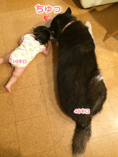 20150722ちゅ06.jpg