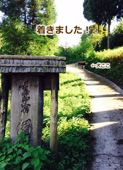 20150915季節宿國安01.jpg