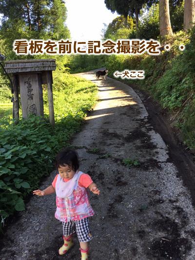 20150915季節宿國安02.jpg