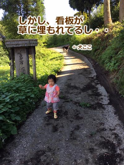 20150915季節宿國安03.jpg