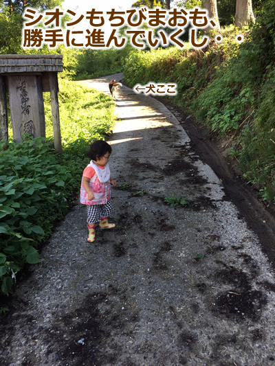 20150915季節宿國安04.jpg