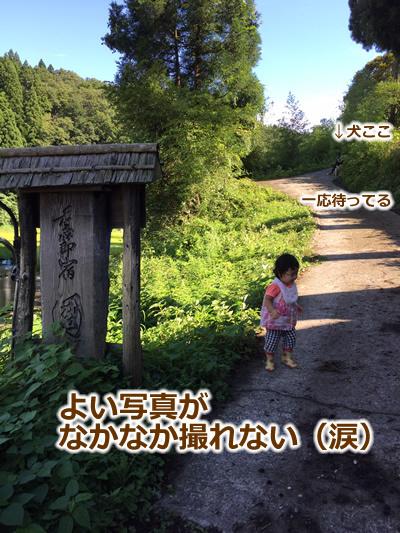 20150915季節宿國安05.jpg