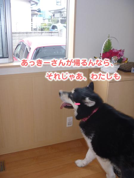 あっきー04.jpg