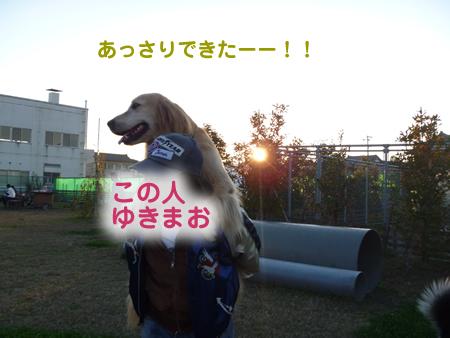 おんぶ07.jpg