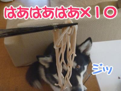 お蕎麦4.jpg