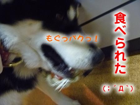 しめ飾り3.jpg