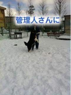 ひとりぼっちのドックラン雪原編05.jpg