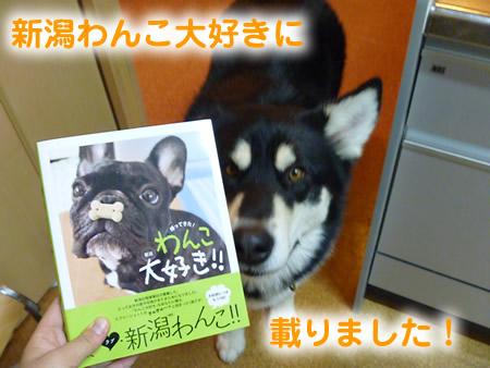 わんこ本01.jpg