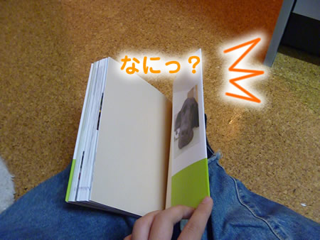 わんこ本06.jpg