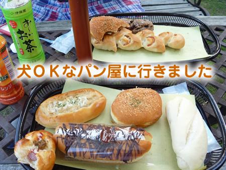 アラスカンマラミュートパン01.jpg