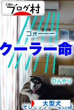 クーラー占領犬04.jpg