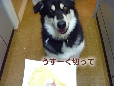 ケーキ04.jpg