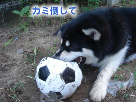 サッカー5.jpg