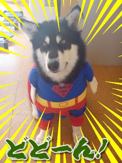 スーパーマンシオン01.jpg