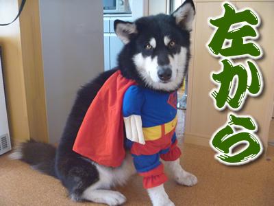 スーパーマンシオン02.jpg