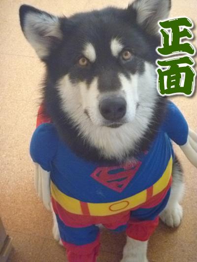 スーパーマンシオン04.jpg