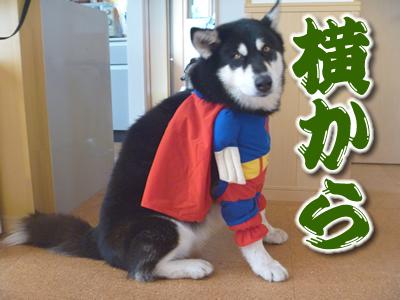 スーパーマンシオン06.jpg