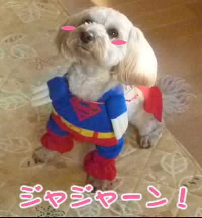 スーパーマン小1.jpg