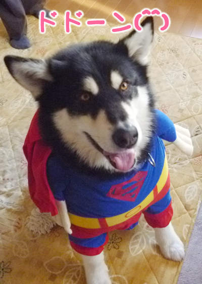 スーパーマン小2.jpg