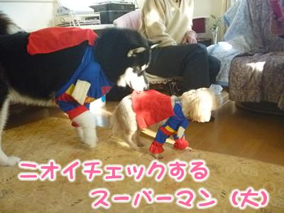 スーパーマン小4.jpg