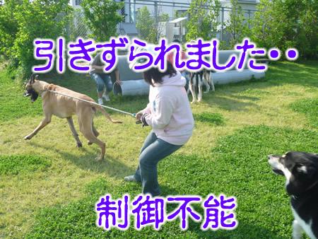 デン後日談03.jpg