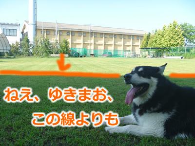 ドックラン風呂3.jpg