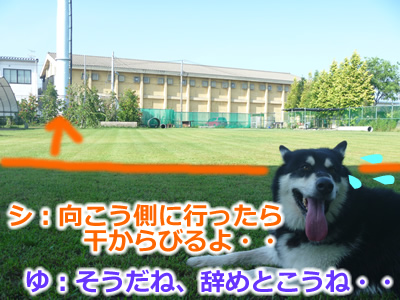 ドックラン風呂4.jpg