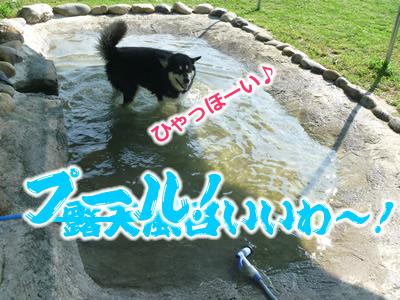 ドックラン風呂7.jpg