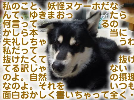 ヌケーホ6.jpg