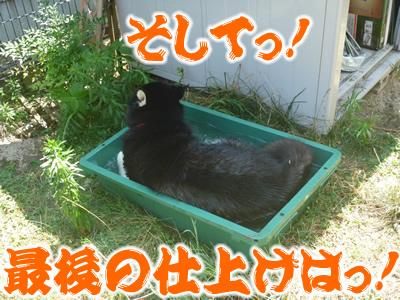 ヌレホーダイ9.jpg
