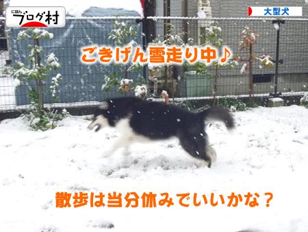 初雪01.jpg