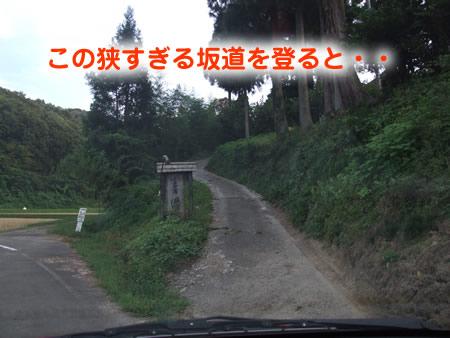 国安01.jpg