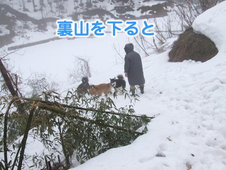 国安201209.jpg