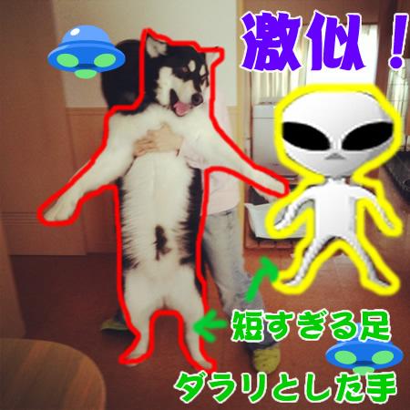 宇宙人04.jpg