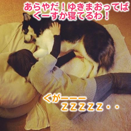 寝てるZ01.jpg