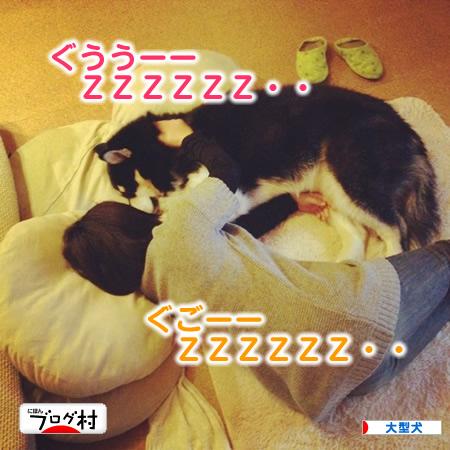 寝てるZ02.jpg