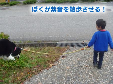 散歩01.jpg