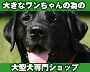 大きなワンちゃんのための大型犬グッズ紹介サイト