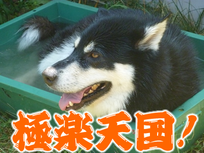 水風呂5.jpg