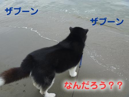 海05.jpg